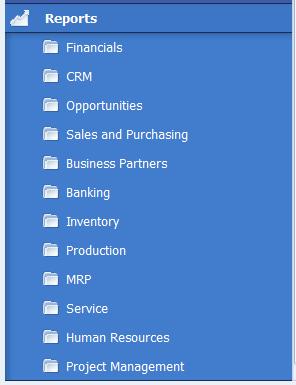 Report Menu for SAP Business Reporting
